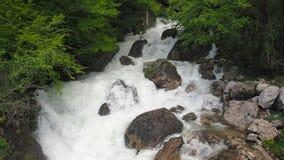 Cascata in una corrente tempestosa della foresta tropicale umida di un fiume della montagna Bella cascata nell'acqua pura della f archivi video