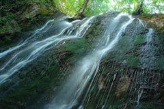 Cascata in una foresta Immagine Stock