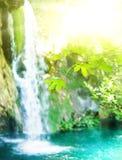 Cascata in una foresta Fotografia Stock