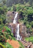 Cascata vicino alla piantagione di tè Fotografie Stock Libere da Diritti