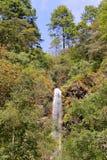 Cascata vicino a Morelia I Fotografia Stock Libera da Diritti