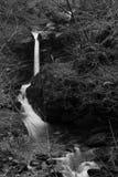 Cascata a watersmeet nel Devon Immagini Stock