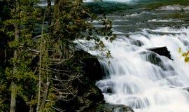 cascatas Fotografia de Stock Royalty Free