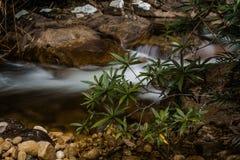 Cascatas da água - Jelawang, Kelantan Fotos de Stock Royalty Free