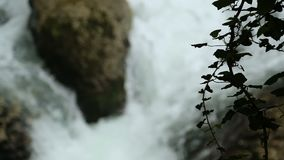 Cascatas das cachoeiras que fluem no rio, garganta selvagem perto de Kutaisi, natureza de Okatse video estoque