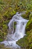 Cascatas de fluxo da angra fotografia de stock