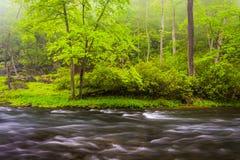 Cascatas no rio da pólvora, perto do reservatório de Prettyboy no Bal Foto de Stock Royalty Free