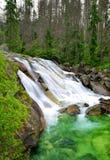Cascate al potok in alte montagne di Tatras, Slovacchia di Studeny della corrente Fotografia Stock Libera da Diritti