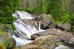 Cascate al potok di Studeny della corrente in alte montagne di Tatras Fotografie Stock Libere da Diritti