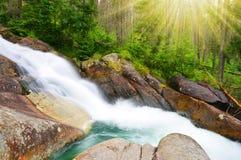 Cascate al potok di Studeny della corrente in alte montagne di Tatras Fotografia Stock Libera da Diritti
