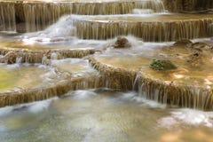 Cascate attuali naturali alte chiuse della corrente nel parco nazionale profondo della foresta Fotografia Stock