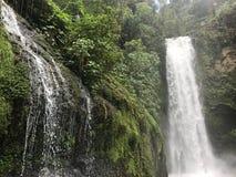 Cascate Costa Rica, BLANCA Heredia di vara fotografia stock libera da diritti