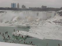 Cascate del Niagara Ontario Canada nell'inverno immagini stock libere da diritti