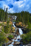 Cascate dell'insenatura di groviglio in Jasper National Park, Alberta, Canada Fotografie Stock Libere da Diritti