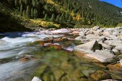 Cascate di acqua Fotografie Stock