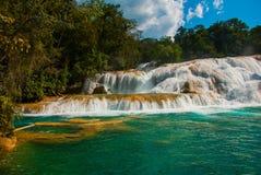 Cascate di Cascadas de Agua Azul Agua Azul yucatan mexico fotografia stock libera da diritti