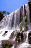 Cascate di Iguazu in Argentina e nel Brasile immagini stock libere da diritti