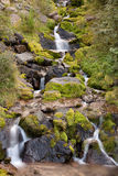 Cascate di un torrente di montagna Royalty Free Stock Images