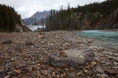 Cascate di Wapta, vicino a dorato, BC, il Canada Immagini Stock Libere da Diritti