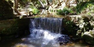 Cascate e fiume nel guarne, antioquia, acque cristalline di un parco all'aperto fotografia stock
