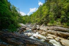 Cascate maestose del fiume di Linville Fotografia Stock
