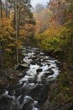 Cascate nel fiume Little Pigeon in autunno fotografia stock