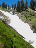 Cascate nel prato della montagna Fotografia Stock Libera da Diritti