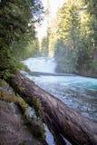 Cascate nell'Oregon fotografie stock libere da diritti