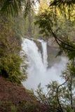 Cascate nell'Oregon fotografia stock