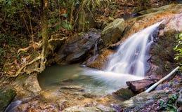 Cascate nella giungla Fotografia Stock Libera da Diritti