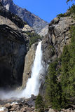Cascate nella sosta del Yosemite Fotografia Stock Libera da Diritti