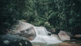 Cascate in profondità nella giungla Immagini Stock Libere da Diritti