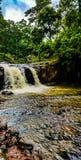 Cascate sceniche nella foresta immagini stock libere da diritti