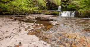 Cascate scorrenti e scena del fiume fotografia stock