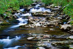 Cascate sulla torrente montano Immagine Stock Libera da Diritti