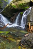 Cascate tropicali Immagini Stock