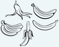 Casco di banane, banana sbucciata e buccia della banana Fotografie Stock