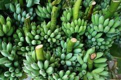 Casco di banane, mercato dell'agricoltore del Vietnam Fotografie Stock Libere da Diritti