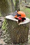 Casco di sicurezza protettivo di silvicoltura Fotografia Stock