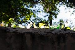 Cascos de cristal en una pared, Livingstone, Zambia Imagenes de archivo