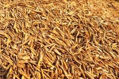 Cascos del arroz Fotografía de archivo