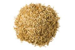 Cascos del arroz Imagenes de archivo