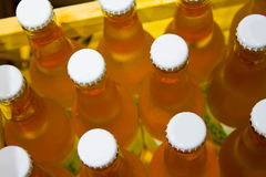 Case of Bottles. Fresh wooden case full of unopened cider bottles Royalty Free Stock Photography