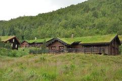 Case del tetto dell'erba. immagini stock