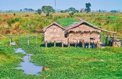 Case del trampolo su acqua, regione di Pegu, Myanmar Fotografia Stock