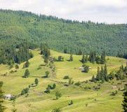 Case del villaggio sulle colline con i prati verdi nel giorno di estate Immagine Stock