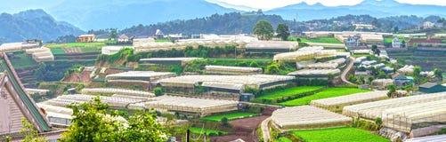 Case dell'altopiano del lat del Da di bellezza sparpagliate Fotografie Stock
