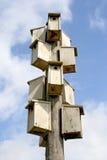 case dell'uccello Fotografie Stock Libere da Diritti
