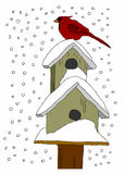 Case dell'uccello nella neve Immagine Stock