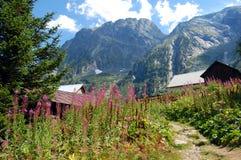 Case delle montagne nelle alpi francesi Fotografia Stock